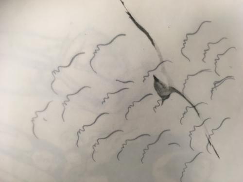"""""""Kommt ein Vogel geflogen..."""" 2018 Zeichnung auf Japanpapier    Tusche und Bleistifft"""